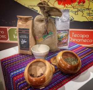 Exploring Coffee in Central America