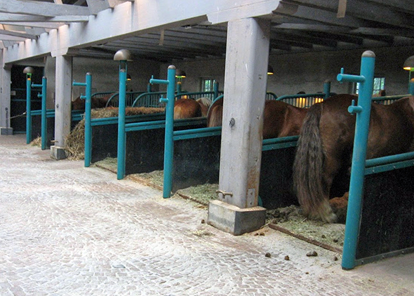 Horse Stables at Carlsberg Brewery