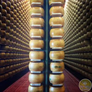 Parmigiano Reggiano wheels aging in Reggio Emilia.
